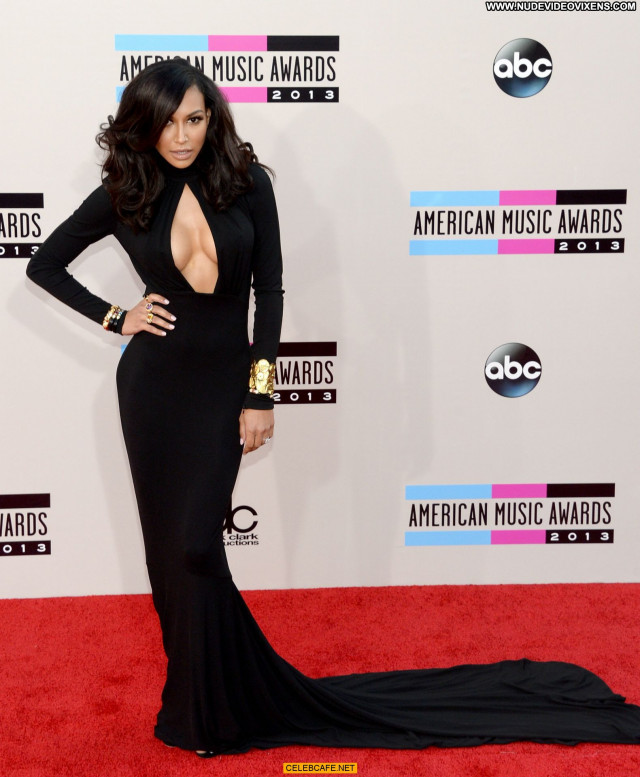 Naya Rivera American Music Awards  Posing Hot River Awards Cleavage